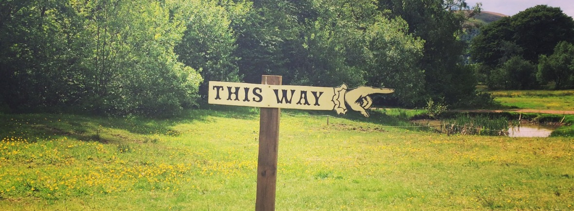 """In the middle of a grassy patch with trees and bshes in the background, a wooden sign post with a finger pointing to the right that reads """"THIS WAY"""""""
